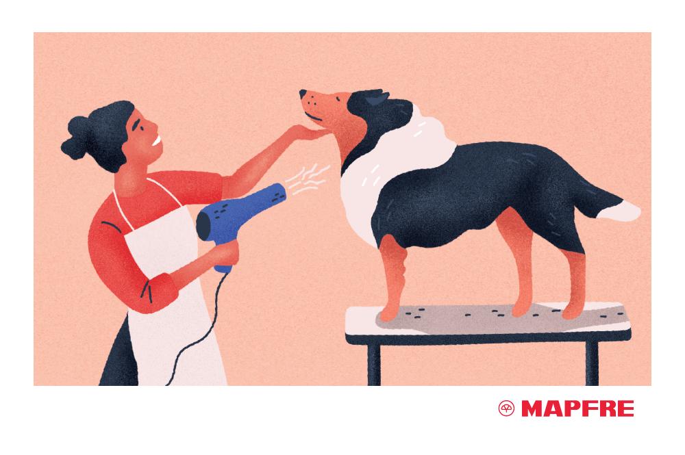 Cada cuando se debe de ba ar a tu perro blog de seguros mapfre - Cuando se puede banar a un cachorro ...